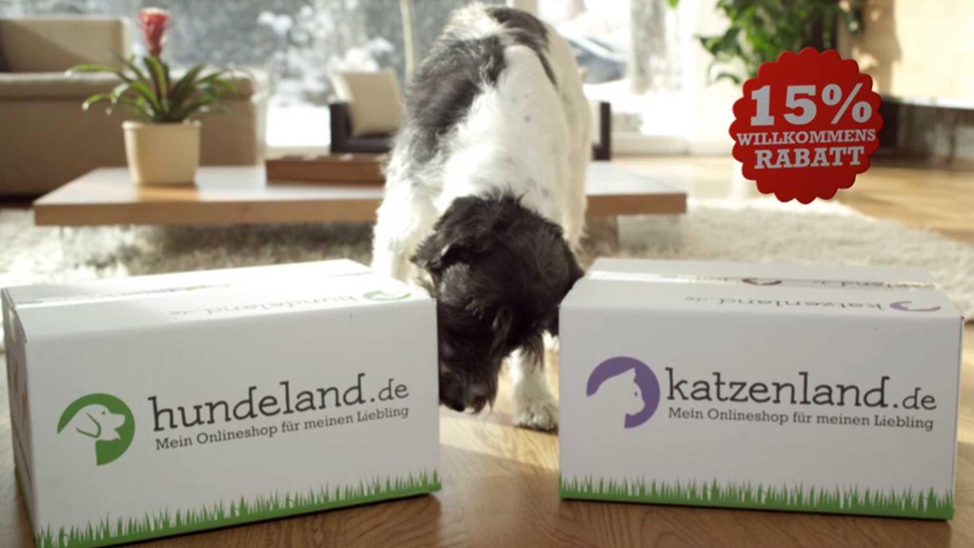 Das Bild zeigt einen Hund der in der Mitte von zwei Kartons steht. Er riecht an einem Karton, der auf der linken Seite steht. Dieser zeigt die Worte Hundeland.de. Daneben steht ein Karton der die Worte Katzenland.de zeigt. Das Bild dient als Sliderbild für den Portfolioeintrag Hundeland Katzenland von Panda Pictures.