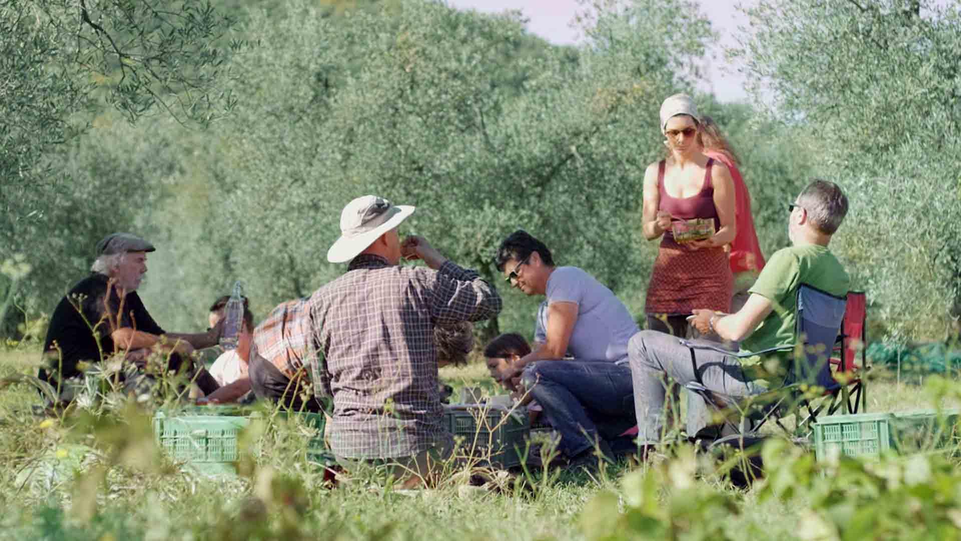 Das Bild zeigt eine Wiese und Bäume. In dieser Wiese sitzen viele Menschen. Eine Frau, die ein rotes Kleid trägt, steht. Neben ihr sitzen zwei Männer in einem Campingstuhl. Das Bild dient als Sliderbild für den Portfolioeintrag Kurzfilm Tränen der Olive von Panda Pictures.